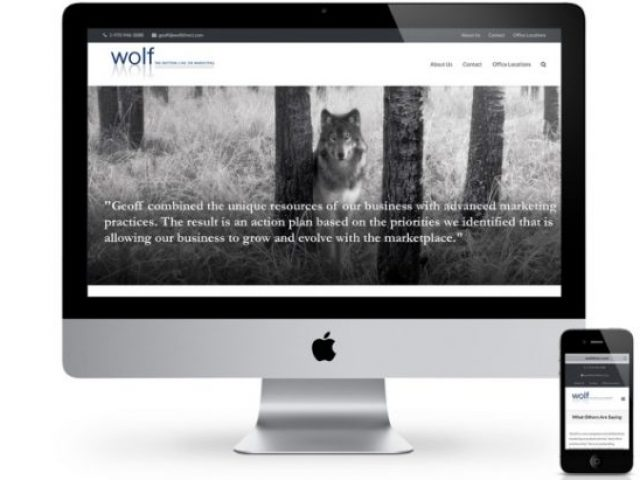 Wolf Direct Website, Mock